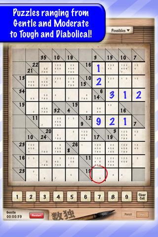 090111-sudoku-4.jpg