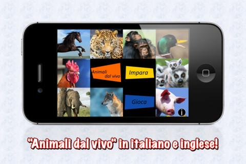 Animali dal vivo