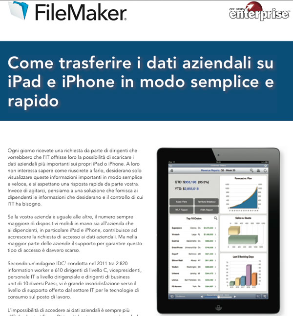 FileMaker white paper