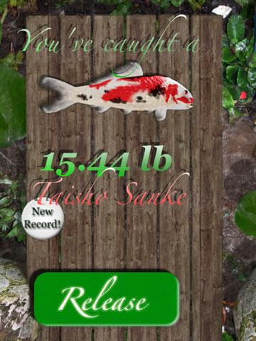 iFish Pond HD iPad