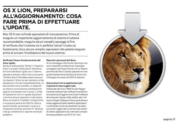 lion installa