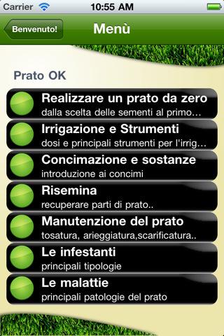 Prato Ok